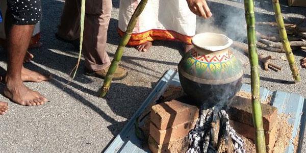 MYC-Co-curricular-Pongal-Festival-1