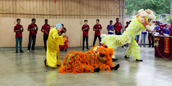 MYC-aboutus_co-curricular_Chinese New Year Celebration1